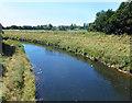 SJ7993 : River Mersey at Crossford Bridge by Des Blenkinsopp