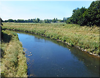 SJ7993 : River Mersey at Crossford Bridge by Des Blenkinsopp