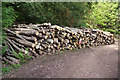 SS8548 : Pile of logs in Yearnor Wood by Bill Boaden