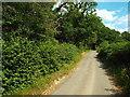 TQ4534 : Parrock Lane, near Hartfield by Malc McDonald
