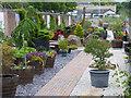NS2059 : Largs Community Garden : Week 28