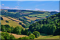 SS9838 : West Somerset : Countryside Scenery : Week 28