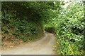 SX8581 : Teign Lane by Derek Harper