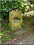 SK4924 : Chinese Garden, Whatton House, stone seat by Alan Murray-Rust