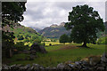 NY3105 : Great Langdale by Ian Taylor