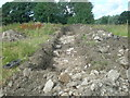 NO6955 : Westward view along a trench at the site of Rossie Castle by Adrian Diack