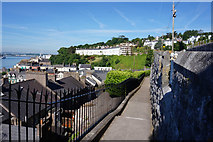 W7966 : Steps leading to Lower Midleton Street, Cobh by Ian S
