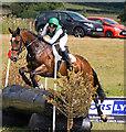NY4657 : Cumbrian Horse Trials, Warwick Hall - 22 July 2018 (9) by The Carlisle Kid