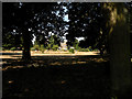 TL5685 : Grounds of Littleport Grange by Keith Edkins
