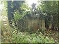 TM5184 : Overgrown pillbox, Benacre by Helen Steed