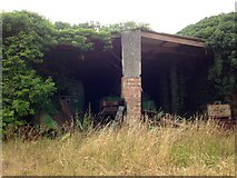 TL6168 : Former Cement Works Engine Shed by Jay Haywood