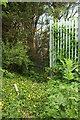 SX9066 : New fence, Nightingale Park by Derek Harper