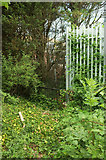 SX9066 : New fence, Nightingale Park by Derek Harper