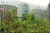 SX9066 : Overgrown and useless stile, Nightingale Park by Derek Harper
