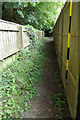 TM3569 : Lovers Lane Footpath to Mill Hill by Adrian Cable