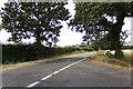 TM3666 : Lintotts Road, Kelsale by Adrian Cable