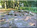NH7544 : Kerb Cairn, Clava Cairns, Balnuaran of Clava by G Laird