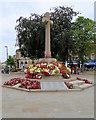 SY0080 : Exmouth War Memorial by David Dixon