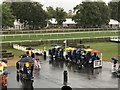 TL6161 : Torrential rain at The July Course, Newmarket by Richard Humphrey