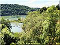 SX8754 : Maypool and the River Dart by David Dixon