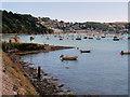 SX8852 : Dartmouth Higher Ferry Slipway by David Dixon