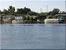 TQ1169 : The River Thames and houses on Lower Hampton Road by Mike Quinn