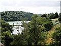 SX8754 : River Dart at Maypool by David Dixon
