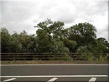SU5894 : Priest's Moor Bridge, Dorchester by David Howard