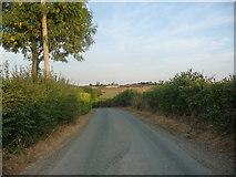 SK1126 : Thorney Lanes descending Rushton's Hill by Christine Johnstone