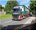 ST3089 : Winter Grace, Barrack Hill, Newport by Jaggery