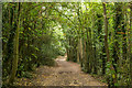 TQ2762 : Footpath, The Oaks by Ian Capper