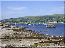 NS0767 : Old pier at Shore Road by Thomas Nugent
