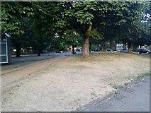 TQ1672 : Green on Ashburnham Road, Ham by David Howard