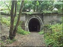 SP7579 : Kelmarsh Tunnel, south portal by Malc McDonald