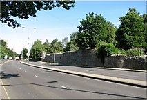 TG2208 : Chapelfield Road - a section of the old city wall by Evelyn Simak