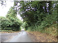 TL8623 : Tey Road, Coggeshall by Adrian Cable