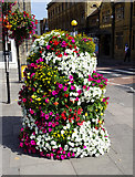 SU1429 : Floral display, Bridge Street, Salisbury by Brian Robert Marshall