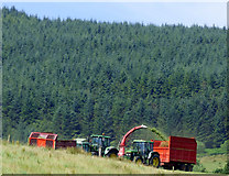 NS0571 : Harvesting silage by Thomas Nugent
