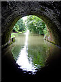 SP5972 : Crick Tunnel north portal in Northamptonshire by Roger  Kidd