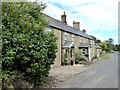 NU2308 : Terraced cottages, High Buston by Oliver Dixon