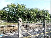 TQ2134 : Faygate Station platform by David Howard