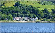 NS0473 : Houses near Altgaltraig Point by Thomas Nugent