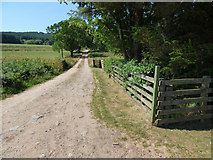NS0373 : Dirt track at Rhubodach Cottage by Thomas Nugent