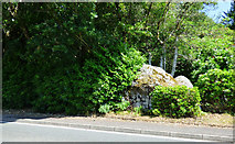 NS0274 : Boulder by the A886 road by Thomas Nugent