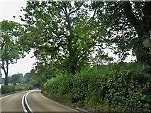SO8507 : Stroud Road south of Painswick by David Howard