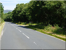 NS0179 : The A886 road at Loch Riddon House by Thomas Nugent