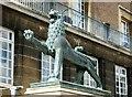 TG2208 : City Hall - lion : Week 33