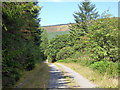 SH7306 : Road into Pant Perthog by John Lucas