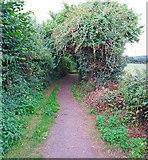 ST0107 : Cullompton: Goblin Lane 4 by Martin Bodman