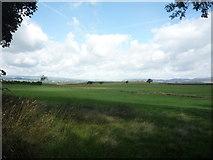 SD8653 : Grazing near Swinden Moor Head by JThomas